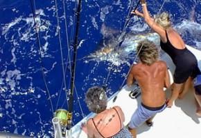 2009 Billfisheries of the Year – #3…St. Thomas