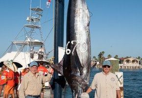 2010 TIFT Billfish Results