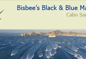 Cabo bite consistent in runup to Bisbee's