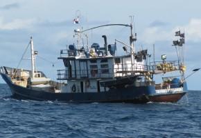 Republic of Panama, the billfish thank you!