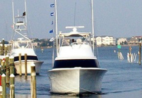 White Marlin Galore out of Pirates Cove, NC