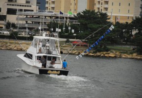 Virginia's Billfish Run