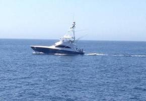 Cabo Striped Marlin Run