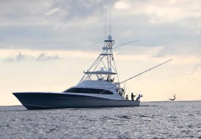 White Marlin Run Begins