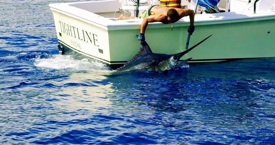 2015 Billfisheries of the Year – #9 Madeira