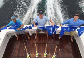 White Marlin Invade Mid-Atlantic