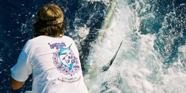 700 lb. Blue Marlin