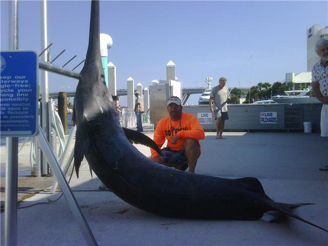 2010 Billfisheries of the Year – #9 South Florida