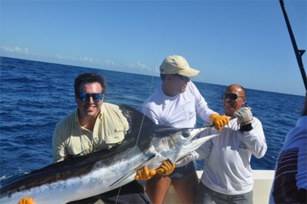 Brazil's Big White Marlin