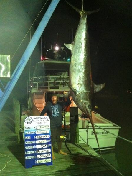 World Record Swordfish