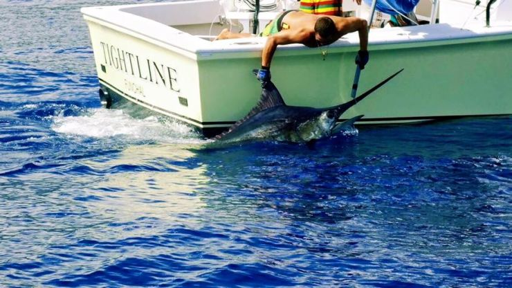 2015 Billfisheries of the Year – #9 Madeira