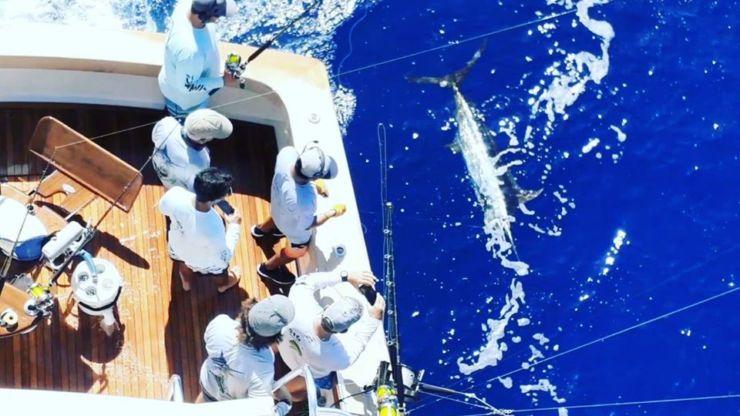 2019 Billfisheries of the Year – #9 Cap Cana